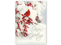Red Winged Greetings Holiday Cards