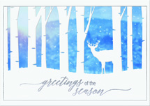 Nature Sighting Holiday Cards